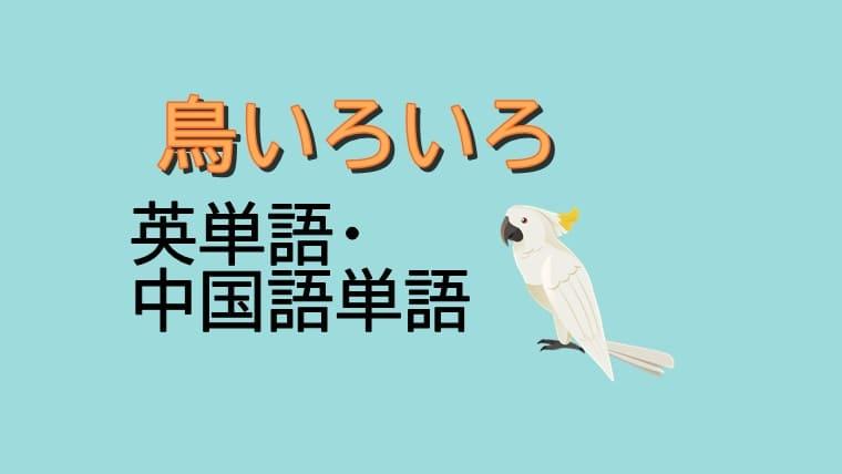 鳥の英単語・中国語単語